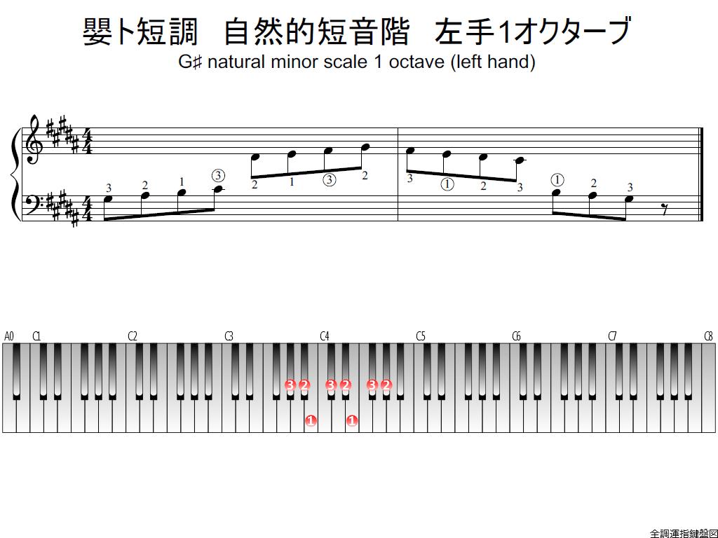 f1.-G-sharp-m-natural-LH1-whole-view-plane