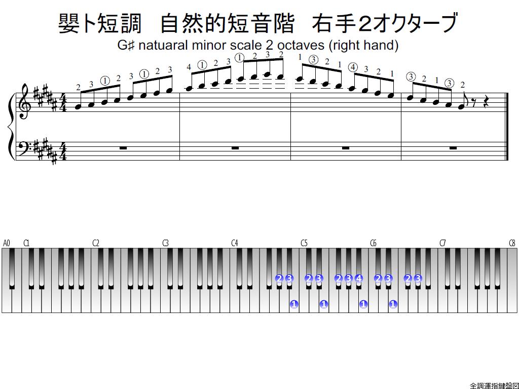 f1.-G-sharp-m-natural-RH2-whole-view-plane