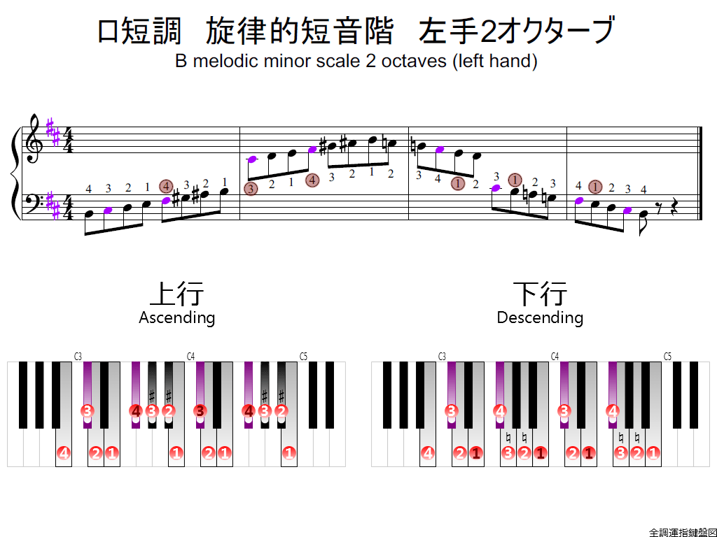 f2.-Bm-melodic-LH2-whole-view-colored