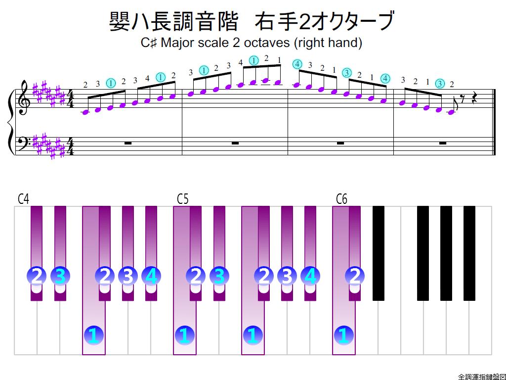 f2.-C-sharp-RH2-whole-view-colored