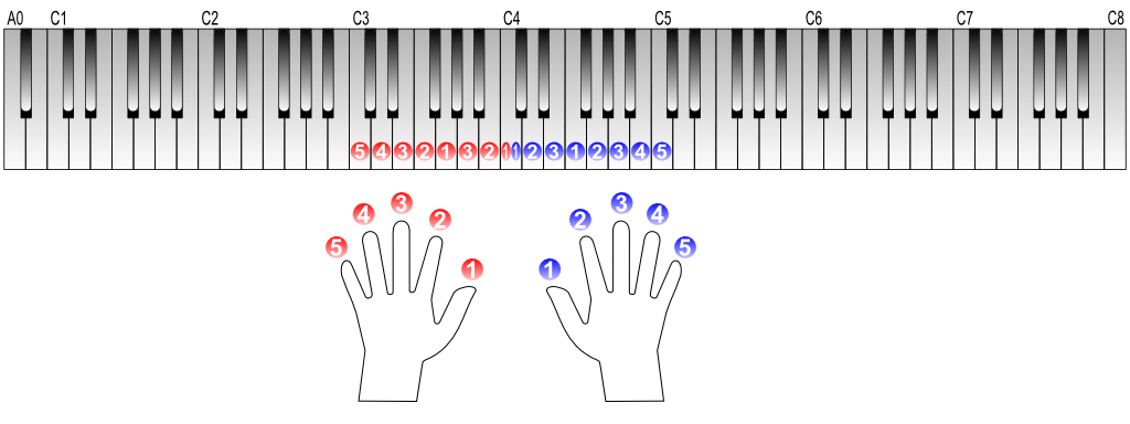 右手と左手の指番号