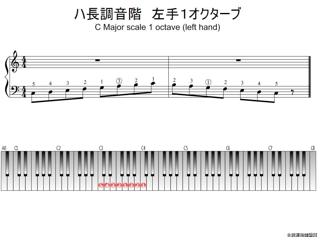f1.-C-LH1-whole-view-plane