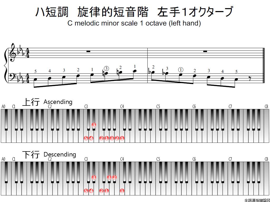 f1.-Cm-melodic-LH1-whole-view-plane