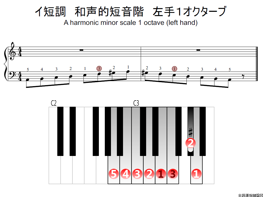 f2.-Am-harmonic-LH1-whole-view-colored