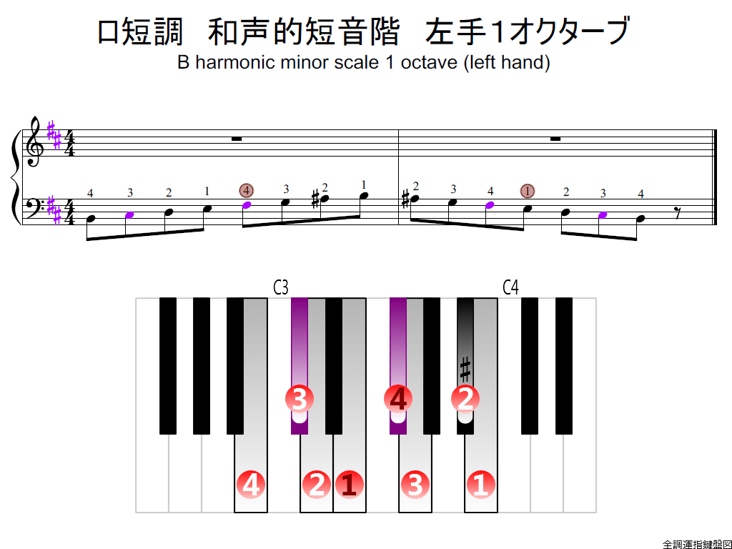 f2.-Bm-harmonic-LH1-whole-view-colored