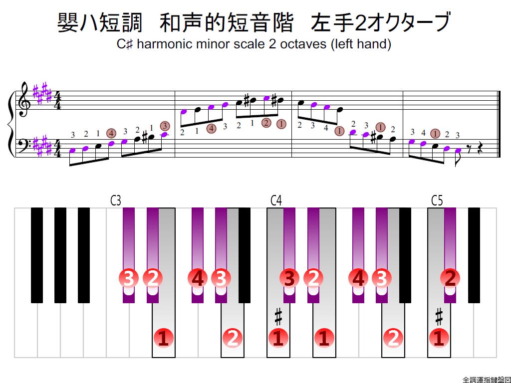 f2.-C-sharp-m-harmonic-LH2-whole-view-colored